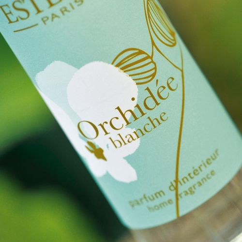 orch blanche_2